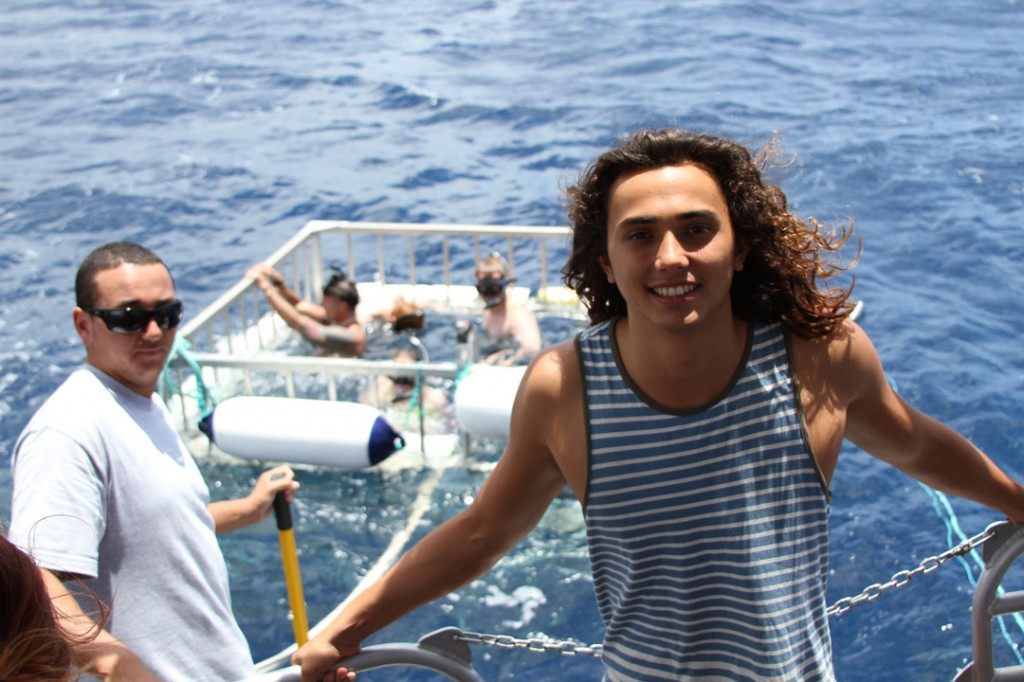 North Shore Shark Adventures - Backpackers Hawaii