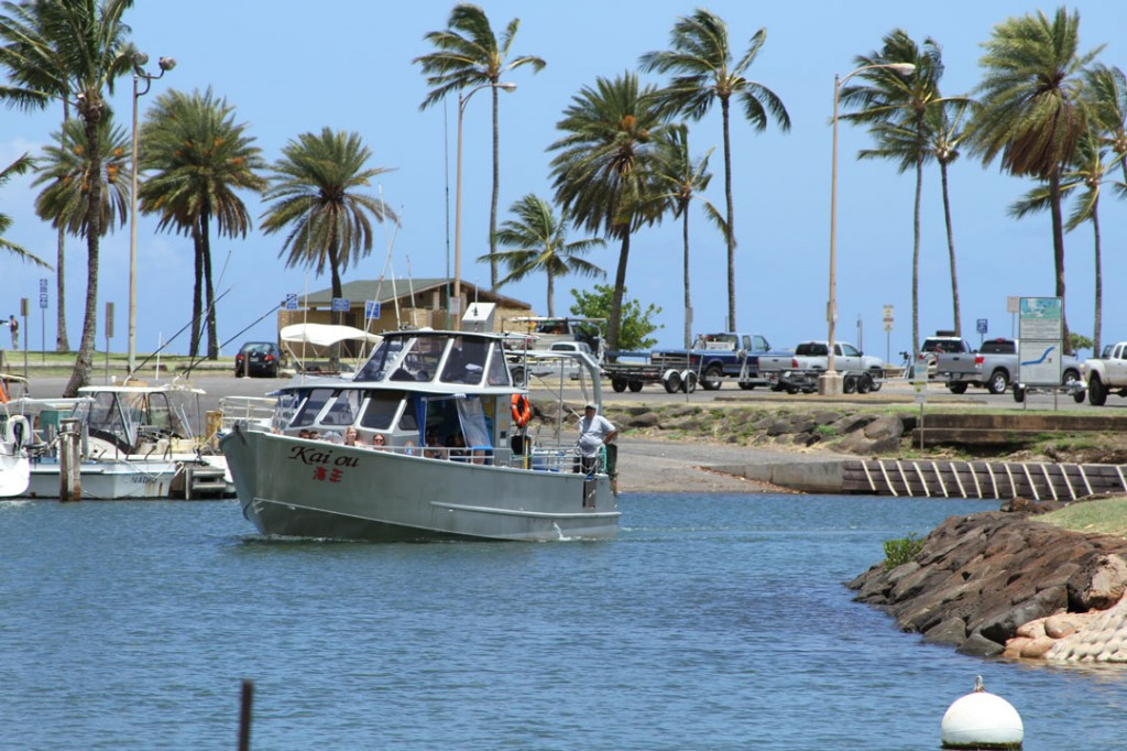 north_shore_shark_adventures_tours_boat_haleiwa
